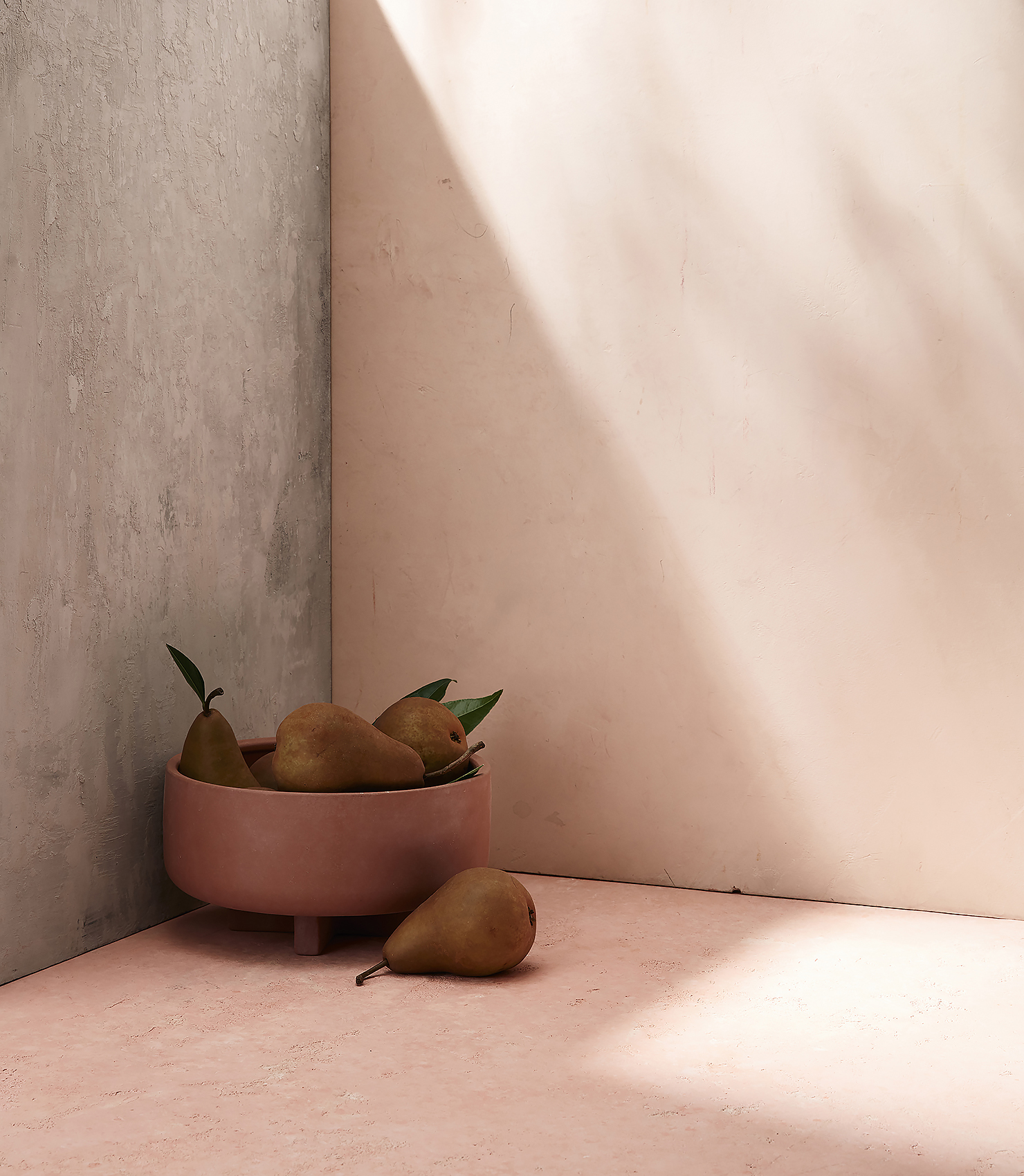 Pears in a bowl | natural light | shadow